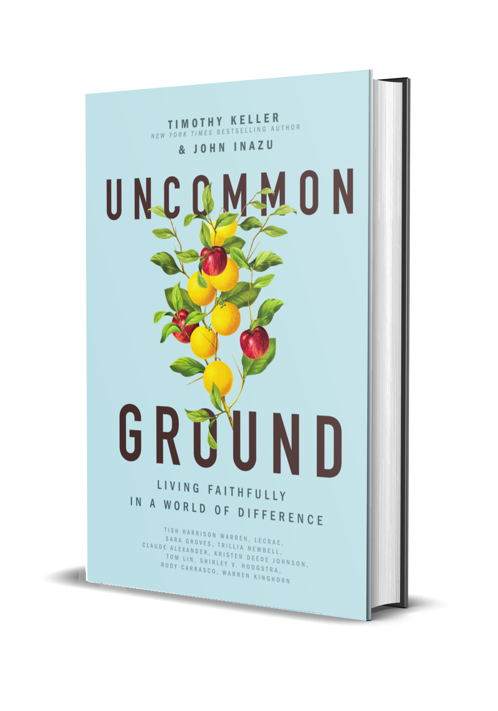 3D rendering of Uncommon Ground book